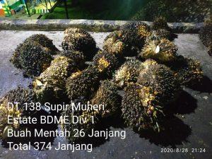 BDME Divisi 1 TBS Mentah 26 Janjang