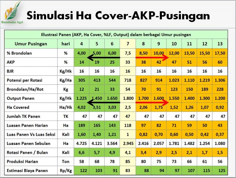 Simulasi Ha Cover-AKP-Pusingan - Sumber : Bapak Guntur Hamonangan Hasibuan (PC KalTeng)