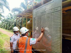 Pengecekan Monitoring Prestasi Kerja Harian team Semprot BHJE