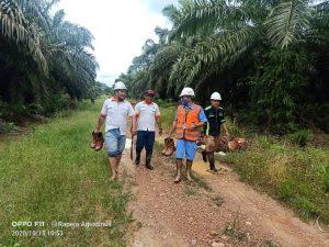Team mulai berjalan dan menuju kembali ke Estate BHJE