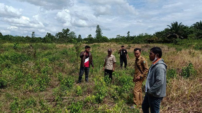 Dok. Survey lahan Desa Wonosari 1