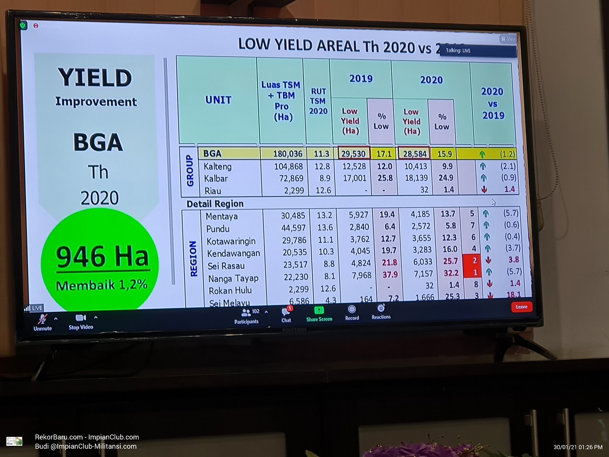 Low Yield Areal Tahun 2020 vs 2019